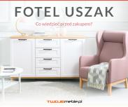 Fotel Uszak – co wiedzieć przed zakupem?